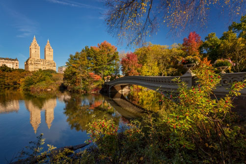 Fotografie – Bow Bridge, New York Central Park