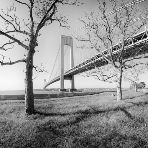 Verrazano-Narrows Bridge, most v New Yorku